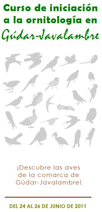 Portada del folleto del curso de ornitología en Gúdar-Javalambre.