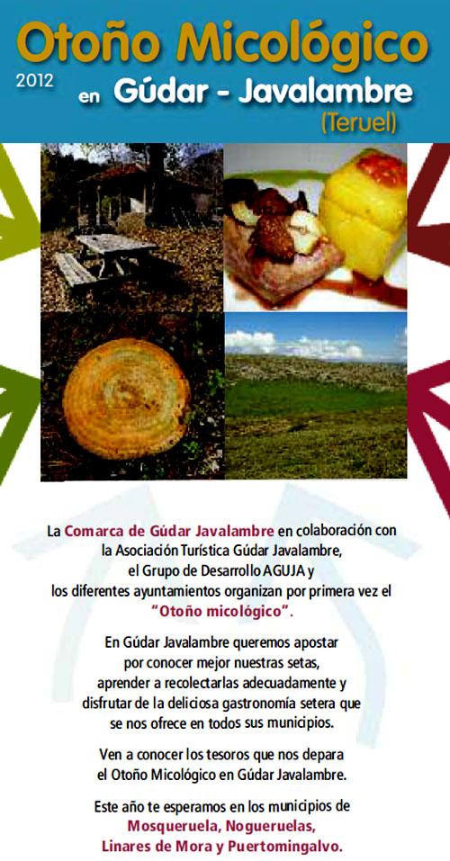 """Cara del tríptico de """"Otoño micológico en Gúdar-Javalambre (Teruel)"""""""