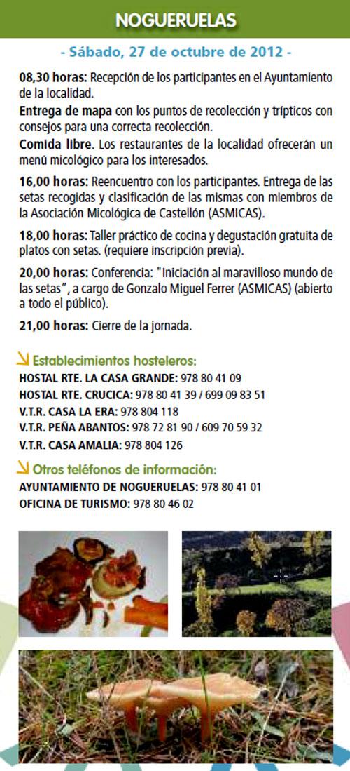 Ruta de Nogueruelas (Teruel) el Sábado 27 de Octubre de 2012