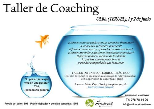 coaching_olba